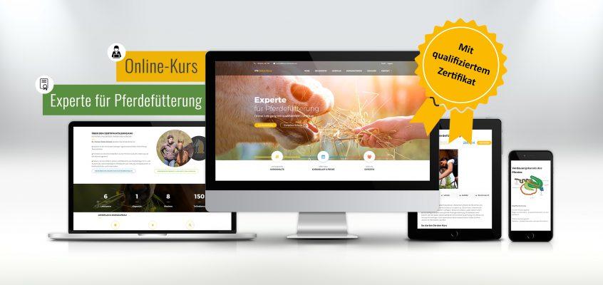 Neuer Online-Lehrgang: Experte für Pferdefütterung