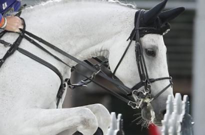 Bertram Allen siegt in London auf Ex-Pferd von Marcus Ehning
