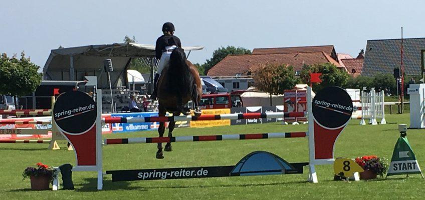 Noch mehr Service bei spring-reiter.de! Jetzt alle Turniere der Landesverbände mit einem Klick!