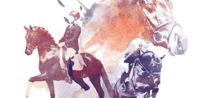 Frühjahrs-Kollektion der Oldenburger Pferde online