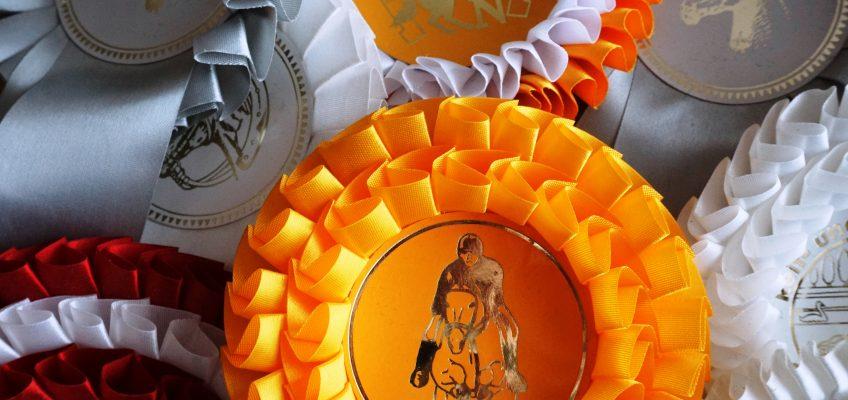 Turniersportstatistik 2017: Mehr Turniere und Prüfungen, weniger Pferde