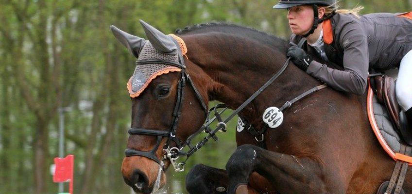 Sandra Auffarth gewinnt im Stechen Championat der Berufsreiter