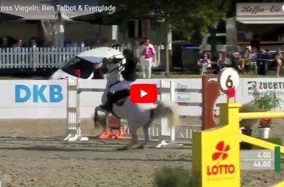 ausrüstung pferd und reiter