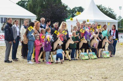 Erlebnistag Pferd – Sommerferienaktion für pferdeinteressierte Kinder