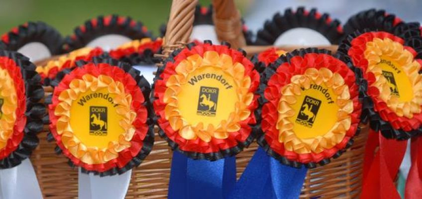 Oldenburger Hengst Stargold gewinnt Youngster-Championat