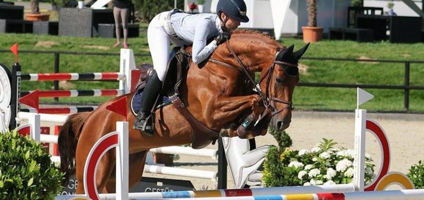 """""""Eines der besten Pferde, das ich je gezüchtet habe"""""""