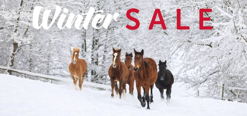 Winter Sale bei Fundis