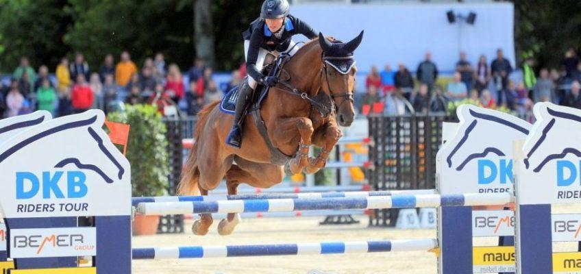 Süddeutsche Pferdezuchtverbände mit neuer Spitze