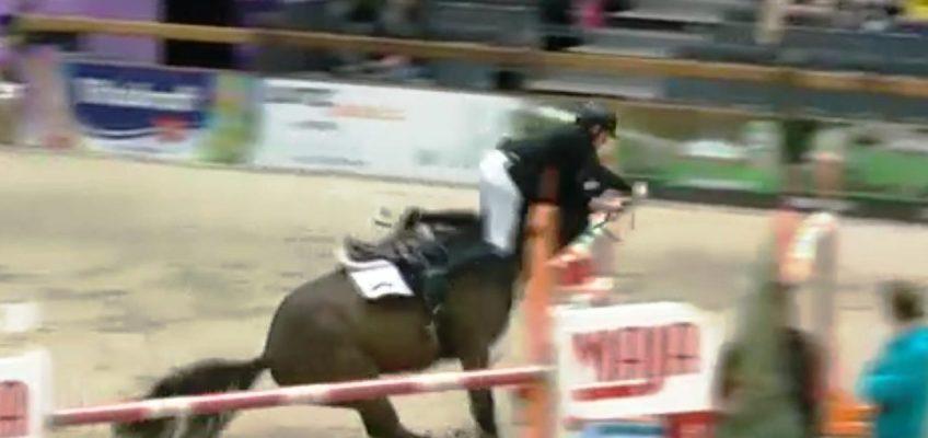 Marcus Ehning stürzt in Offenburg beim Stechen in einen Oxer