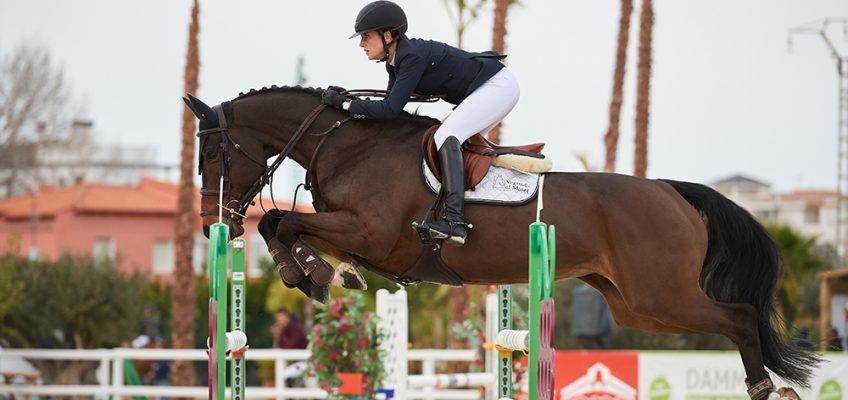 Premiere für Hetzel Horses:  Online-Auktion übertrifft Erwartungen