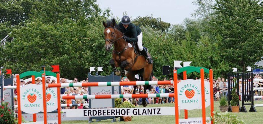Reitpferde- und Fohlenauktion Glantz & Gloria erst wieder 2021