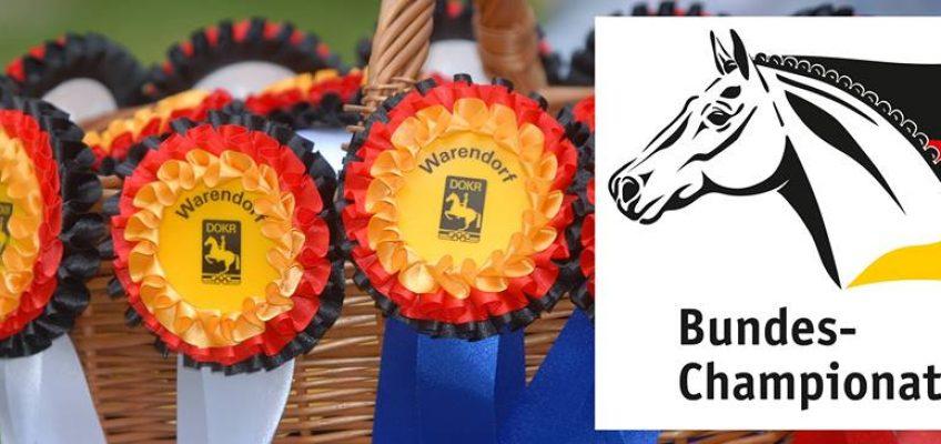 """Bundeschampionate: """"Wir hoffen, dass viele Veranstalter entsprechende Prüfungen für junge Pferde anbieten."""""""