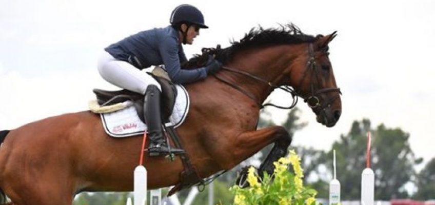 Schon wieder zweimal Synephrine in Pferdeblut entdeckt