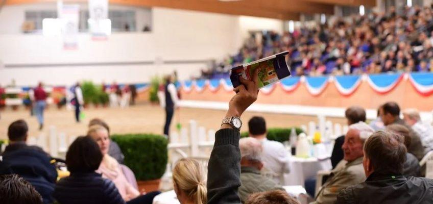 Holsteiner Winter-Chance bringt mehr als 1,1 Millionen Euro