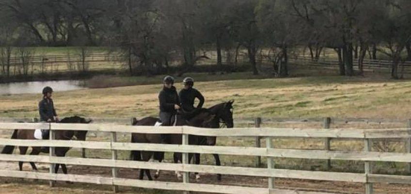 Corona in den USA: Mathis Schwentker erzählt von seinem Alltag in Texas!