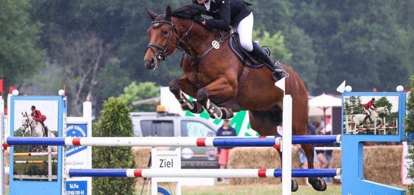 Coronavirus: Wie wir die Versorgung der Pferde sicherstellen