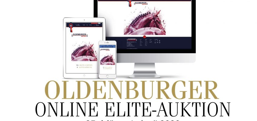 Oldenburger Elite-Auktion wird zur Online-Auktion