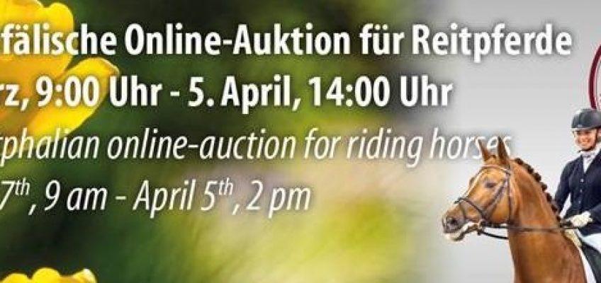 1. Westfälische Online Elite-Auktion für Reitpferde!
