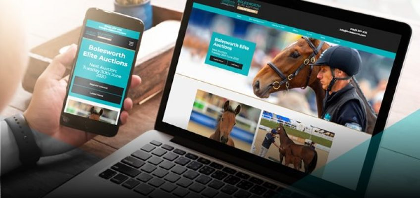 Jährlings-Kollektion der Bolesworth Elite Auktion ist online