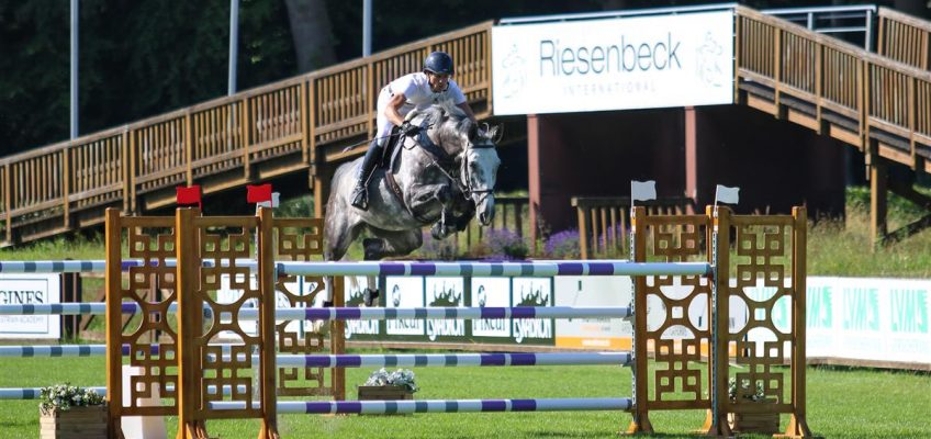 Im August international: Zweimal CSI** in Riesenbeck