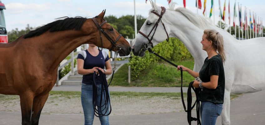 Sophie Hinners Zweite am deutschen Tag in Peelbergen