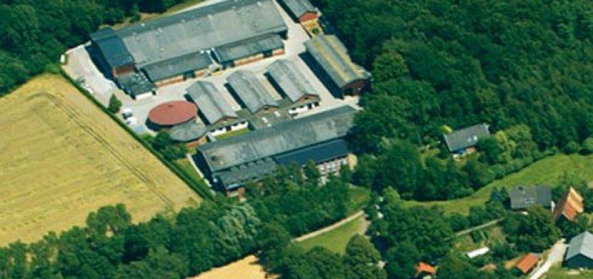 Westfälisches Pferdezentrum rettet Deutsche Amateurmeisterschaft!