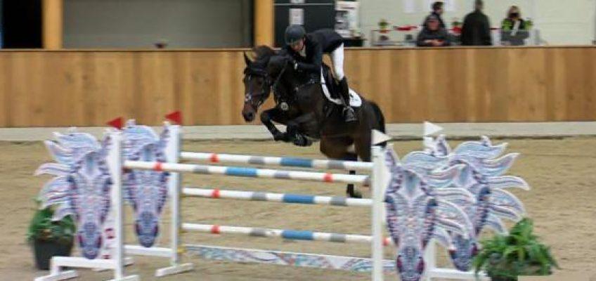 Vom Amateur-Pferd zum Shooting-Star: Dakota Blue Girl gewinnt in Riesenbeck!
