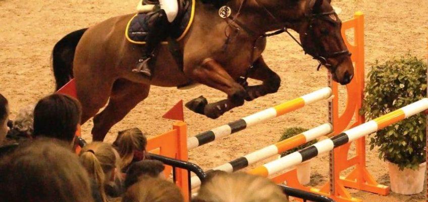 Bühne frei für Hannovers Springpferde beim Masters