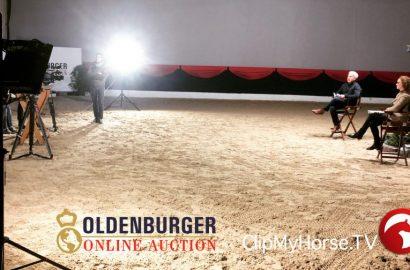 Online-Präsentation der Oldenburger Reitpferde