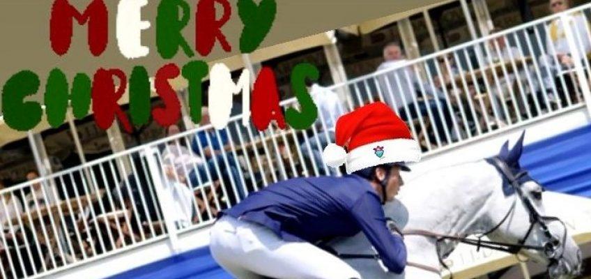 Fröhliche Weihnachten wünscht spring-reiter.de!