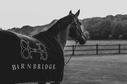 Barnbridge bietet die Lots von Elite-Auktionen auf einer Plattform