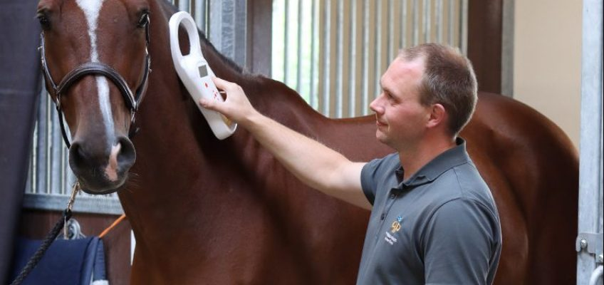 In Riesenbeck ist der Tierarzt jetzt mit eigener Praxis vor Ort
